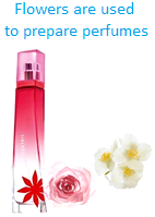 Flowers are used to prepare Perfumes