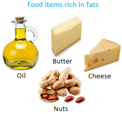 Food items Rich in Fats