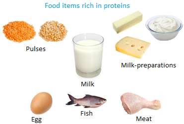 Food items Rich in Proteins