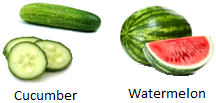 Fruits Contains Water