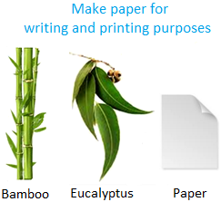 Make Paper for Writing and Printing Purposes