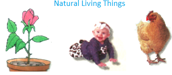 Natural Living Things