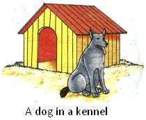 A Dog in a Kennel