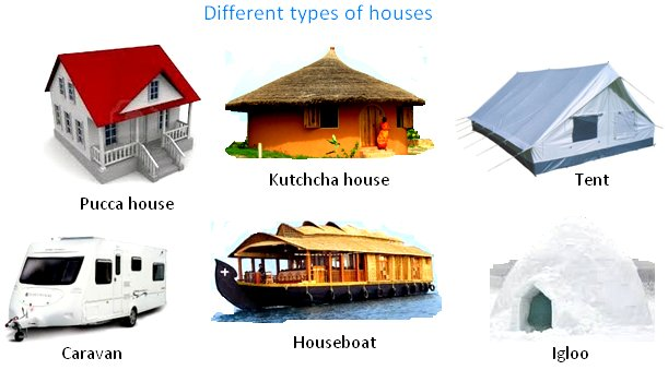 Pucca house pictures for kids