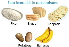 Foods That Do Contain Carbohydrates
