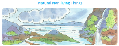 Natural Non-Living Things