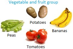Vegetable and Fruit Group